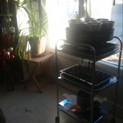 Préparer son jardin
