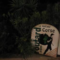 les doudous en corse : les deux derniers jours