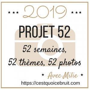 logo-projet-52-2019-milie